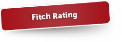 Fitch Rating